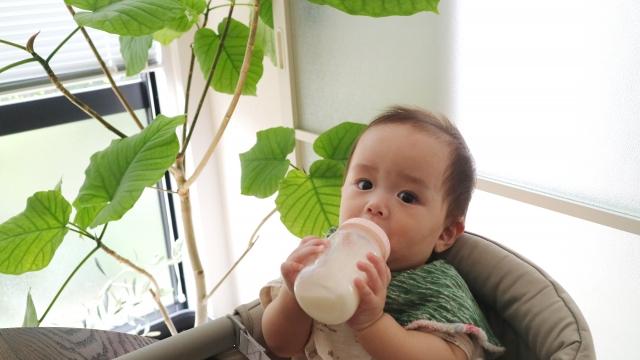 液体ミルク 温め方 アイクレオ ほほえみ 外出