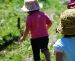 お泊まり保育 スケジュール 幼稚園 保育園 内容 持ち物とは 保育士